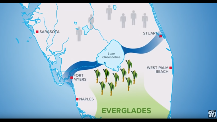 Florida Everglades Map.What Does Big Sugar Have To Do With Florida S Red Tide Wtsp Com