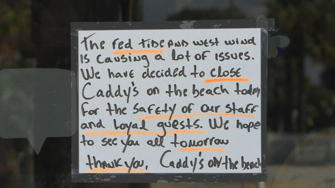 Red Tide Forces Early Closures For Some Pinellas Beach Businesses