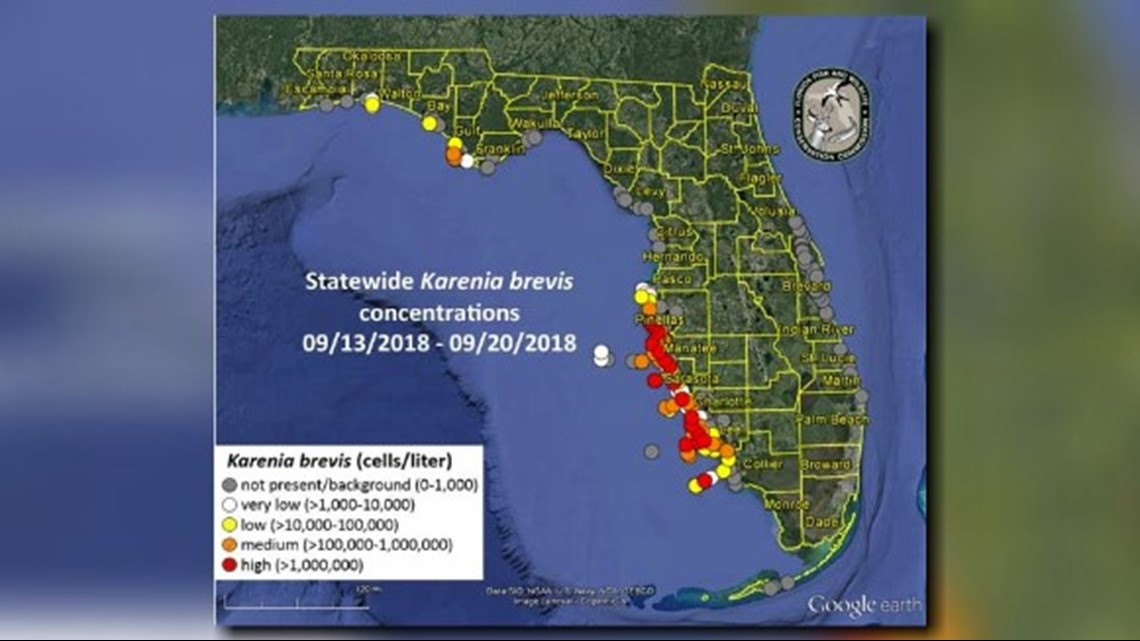 Map Of Pinellas County Florida.Red Tide Continues To Stretch From Pinellas County To Collier County