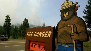 Smokey Bear celebrates 75th birthday