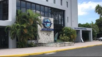Sarasota County commits $20 million to new Mote Aquarium