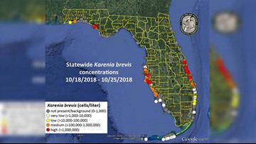 High red tide concentrations still seen in Pinellas, Manatee, northern Sarasota counties
