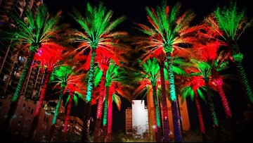 Christmas Lights Tree Lightings Holiday Parades 10 Things