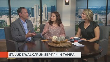 Great Day Tampa Bay on wtsp com