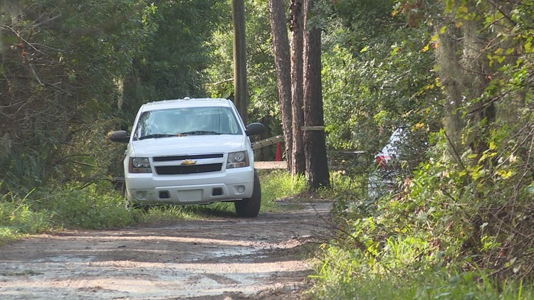 Skeletal remains found in New Port Richey; detectives unsure about foul play