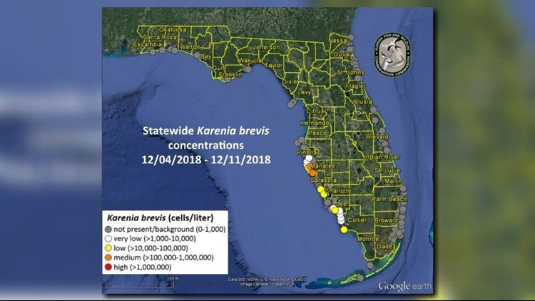 red tide report 12 12 18