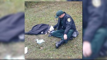 Florida deputy gently comforts dog who was hit by car