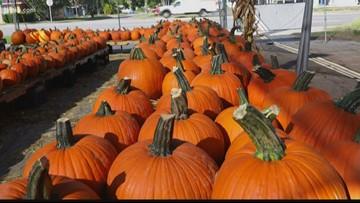 Beyond the Headline: Halloween traditions