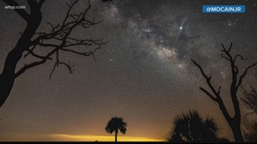See the stars in the sky at Kissimmee Prairie Preserve State Park