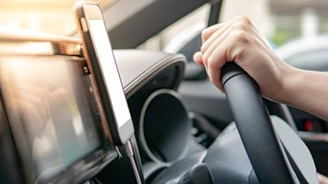 Did you know your steering wheel has more germs than a toilet seat?