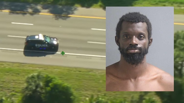 Florida man accused of stealing police cruiser, crashing it, then taking another
