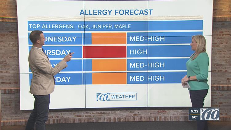 Allergy season is here! February marks peak tree pollen season