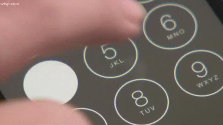 Hillsborough County office  phone lines experiencing 'service interruption'