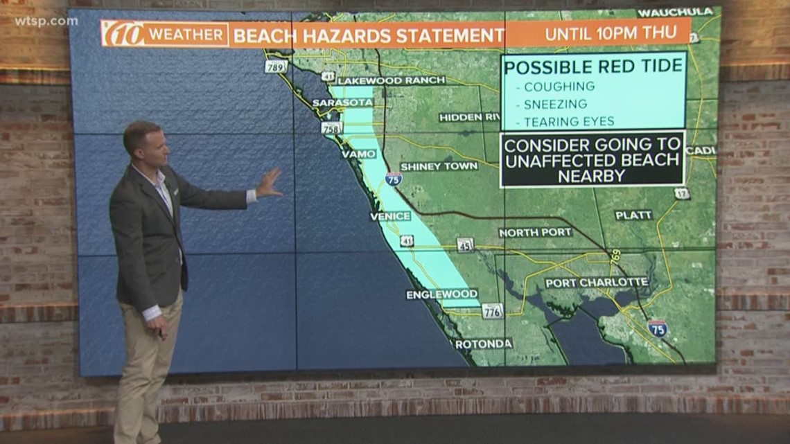Red Tide Affecting Some Sarasota County Beaches Wtsp