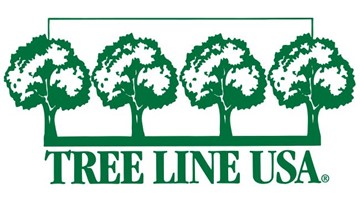 SPONSORED: Arbor Day Foundation recognizes Duke Energy Florida as Tree Line USA utility for 13th consecutive year