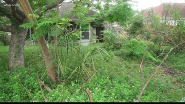 Turn to 10: Man says neighbor's lack of lawn care is hurting his property value