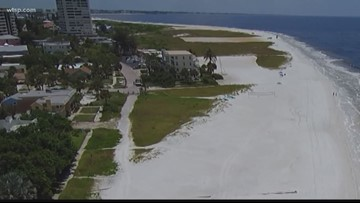 County, group fights over stretch of land on Siesta Key