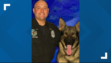 RIP: Retired St. Pete Police K-9 dies after battle with liver cancer