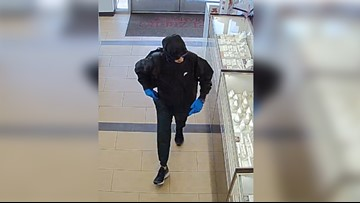 Search on for man who robbed jewelry store at Tampa Premium Outlets
