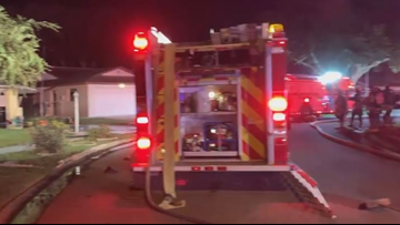 2 dogs found dead after Pasco County house fire