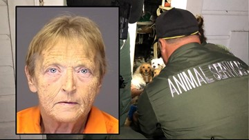 Deputies find more than 20 dead animals in woman's home