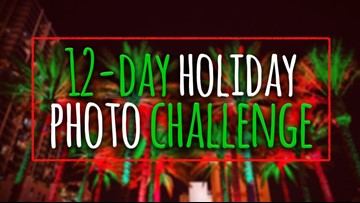 Here's how you can participate in the #10News12Days Photo Challenge