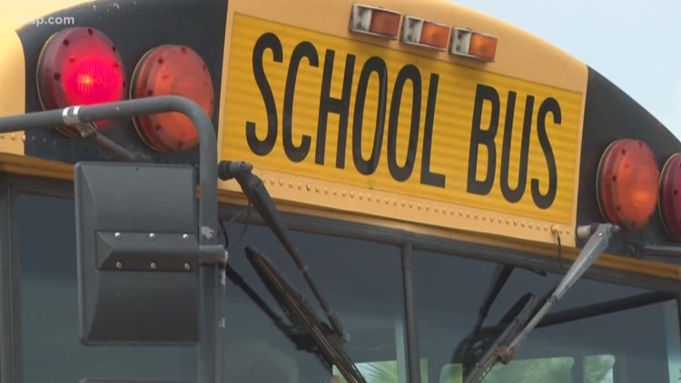 School bus carrying 22 students involved in crash