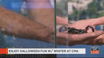 Encounter Creepy Crawlers at CMA
