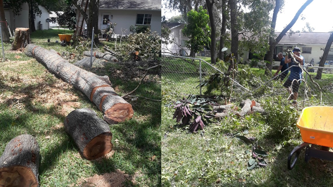 Tree crashes through woman's fence. She Turns to 10 for help