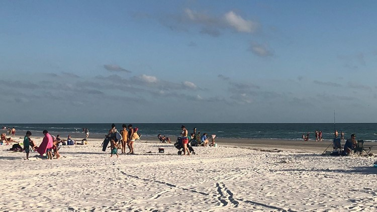 Red tide watch: Here's where it's still a menace along some Tampa Bay-area beaches