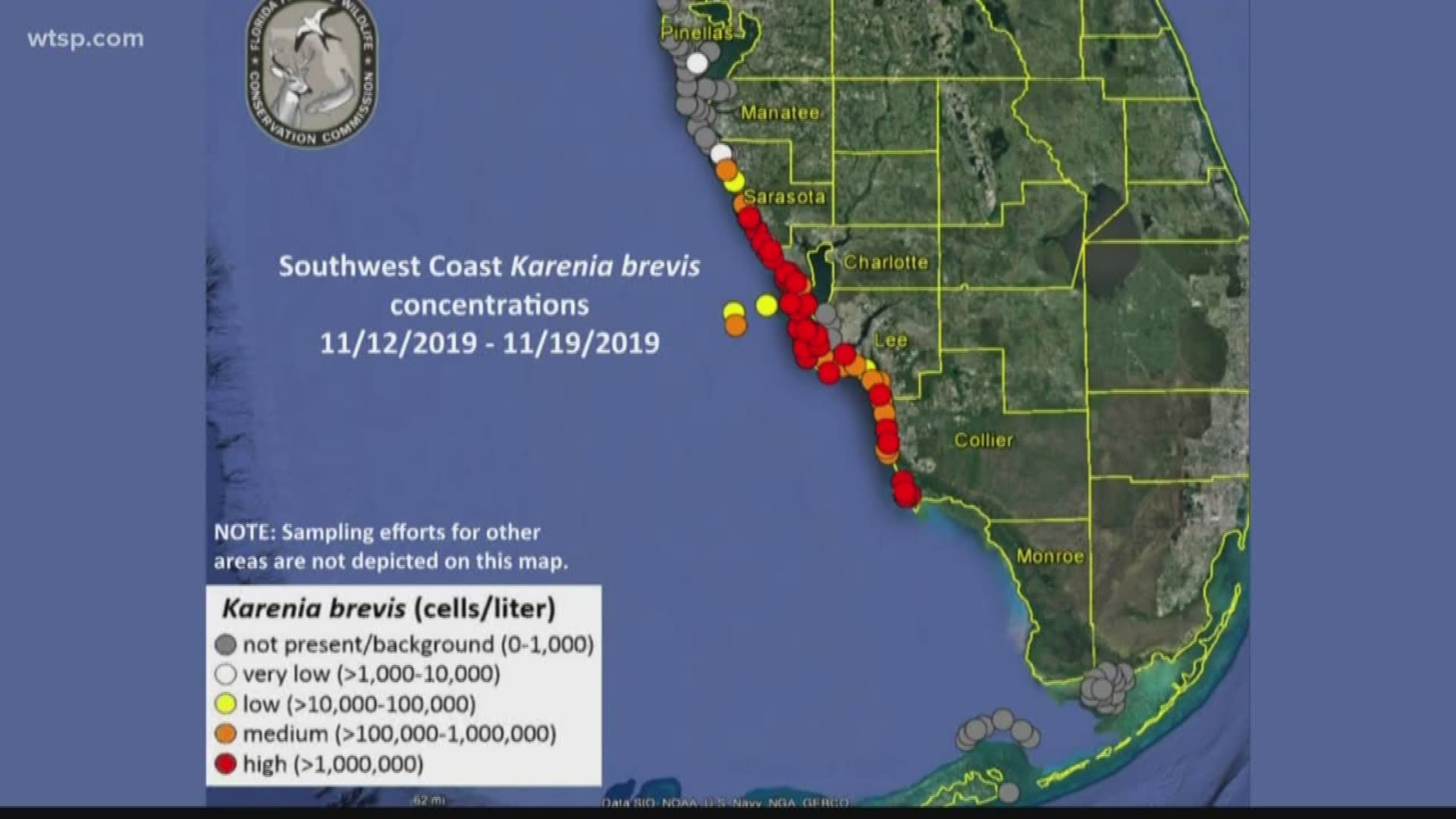 Map Of Florida Red Tide Red tide map latest | wtsp.com