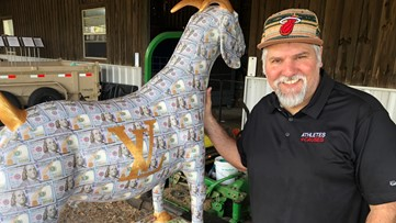 Painted goats statues could help end human trafficking