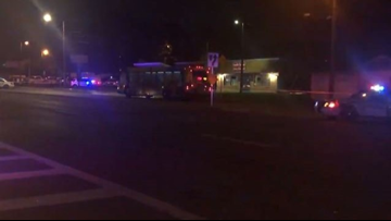 City bus driver stabbed, killed while driving