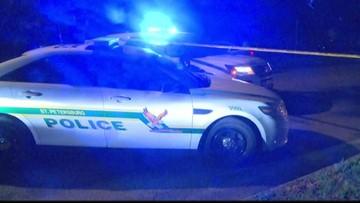 St. Pete police leave program focusing on reducing juvenile car theft