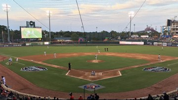 Minor league baseball team to host 'Florida Man Night'