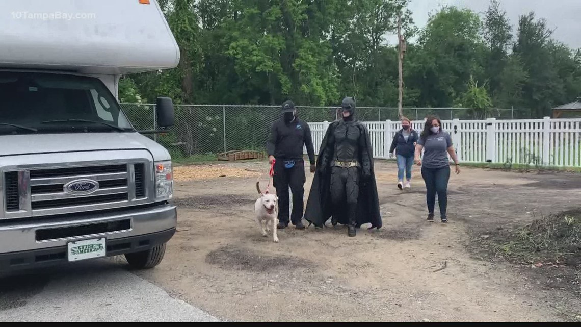 Local dog is being reunited with its owner with the help of Batman