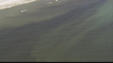 Lake pollution tied to red tide