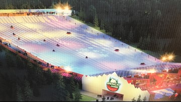 You'll soon be able to go snow tubing in Florida
