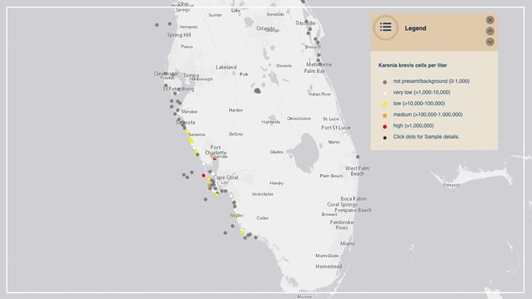 Red tide develops in Sarasota County
