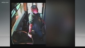 Tampa Bay has history of abuse taking place on busses