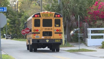 Stop for school buses: New proposed law would double penalties