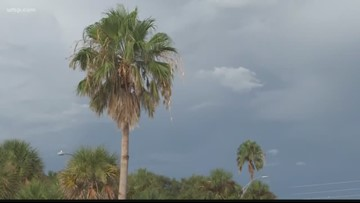 'When thunder roars, go indoors:' Why lightning needs to be taken seriously | 10News WTSP