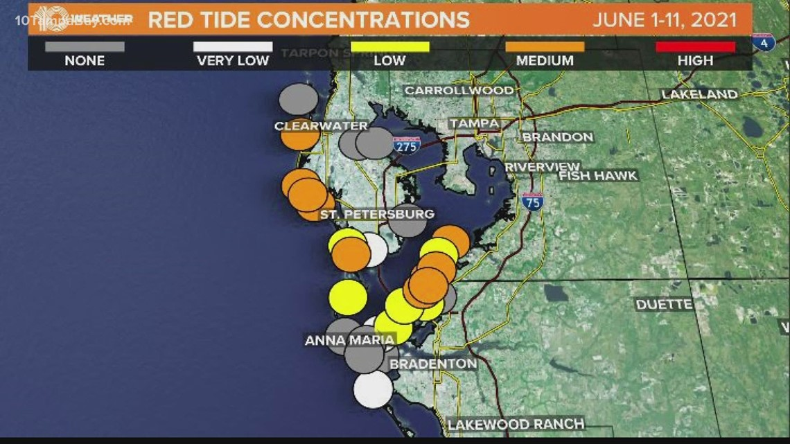 Pinellas County issues health warning for red tide blooms along beaches