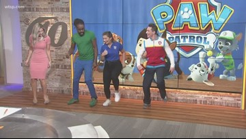 PAW Patrol Live! set for weekend performances at the Straz Center in Tampa