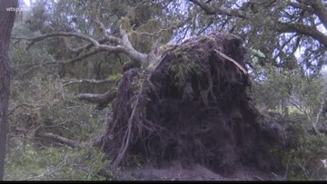 National Weather Service reports that a tornado touched down in Myakka City