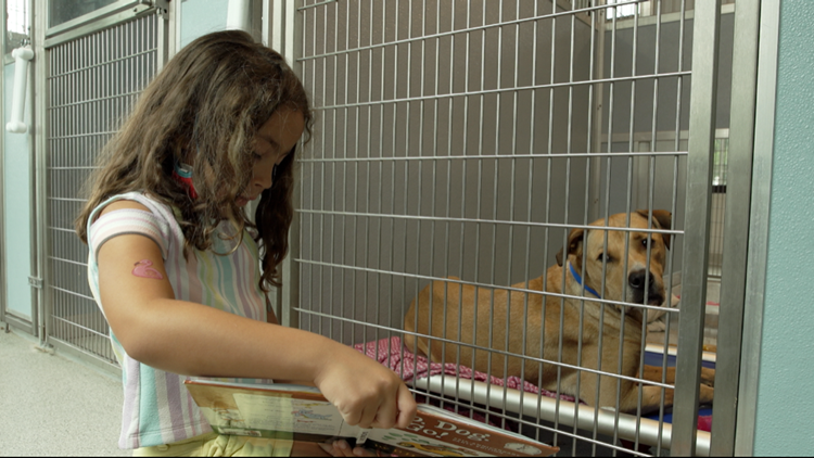 Humane Society of Tampa Bay programs pairs shelter pets with children for storytime