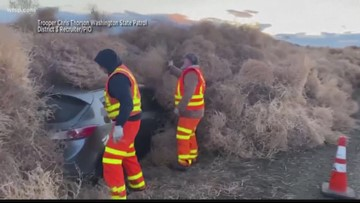 Wow Moments: Tumbleweeds bury cars in Washington, iPhone dropped of the St. Petersburg seawall