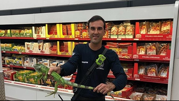 Firefighter removes unwelcome guest from store