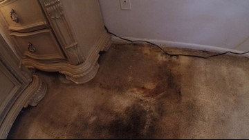 Stained carpets, no fire alarm: Veteran Turns to 10 amid issues at Clearwater apartments