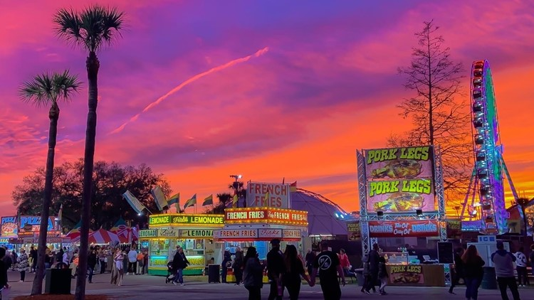 Florida State Fair launches buy one, get one armband sale